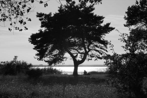 Vielfältige Eindrücke der Natur - auch für ruhige Momente